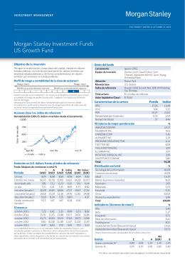 Morgan Stanley Investment Funds US Growth Fund