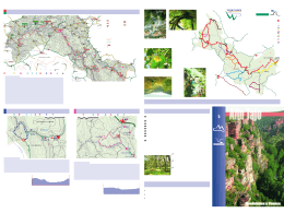 Descargar folleto en PDF (parte 1) - Página Web Oficial de Molina y