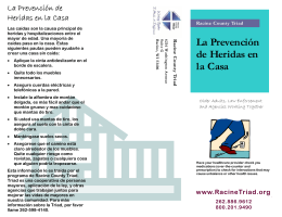 Triad Home Injury Prevention Safety Brochure Spanish