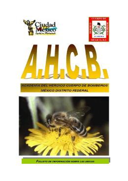 Información sobre las abejas