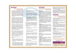 02.folleto ayudas economicas - Comisiones Obreras de Navarra