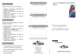 FOLLETO comercio 2014.cdr
