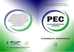 Revista PEC – Primer Avance