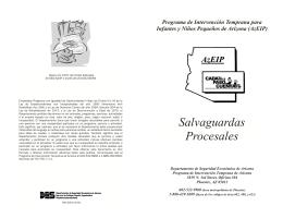 Salvaguardas Procesales