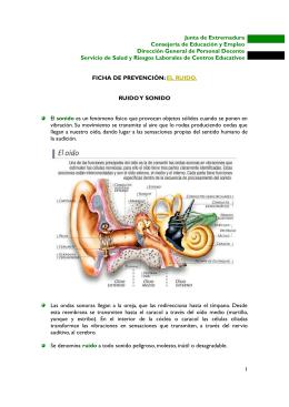 Ficha de prevención- El ruido.