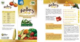 folleto FoleyRey