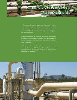 Desarrollo Sustentable y Medio Ambiente