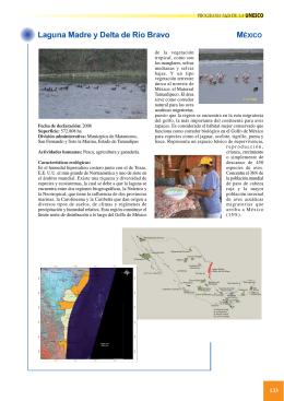 26. Laguna Madre y Delta de Río Bravo