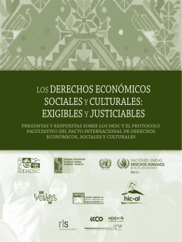 Los Derechos Económicos, Sociales y Culturales - ONU