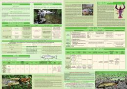 Tríptico explicativo pesca 2015,0 (4.689 kbytes)