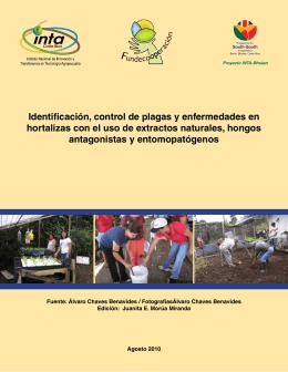 Identificación, control de plagas y enfermedades en hortalizas con