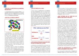 Tríptico de la hiperfenilalaninemia moderada (HPA)