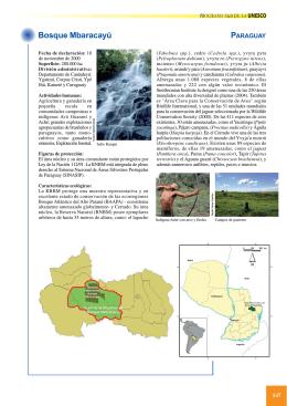 Folleto RBs Iberoamericanas2.qxp - Proyectos Web del Instituto de