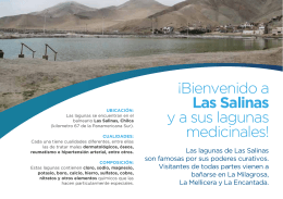 ¡Bienvenido a Las Salinas y a sus lagunas