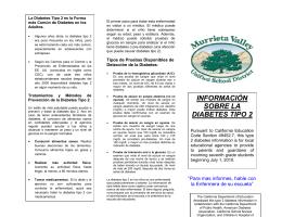 INFORMACIÓN SOBRE LA DIABETES TIPO 2