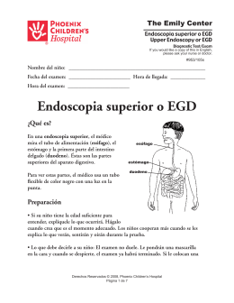Upper Endoscopy or EGD (Endoscopia superior o EGD) 953 105s