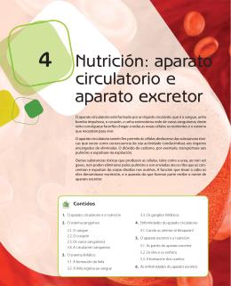 4 Nutrición: aparato circulatorio e aparato excretor