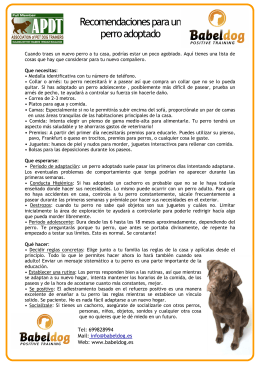 PDF Consejos para la adopción