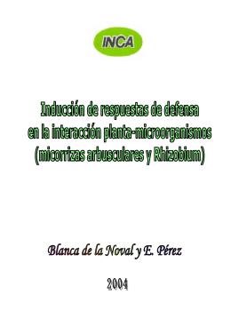Edición Folleto de Blanquita - Inicio