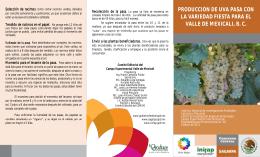 PRODUCCIÓN DE UVA PASA CON LA - Biblioteca