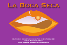 La Boca Seca - Wellness Proposals