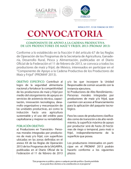 folleto convocatoria promaf 2013 flipbook