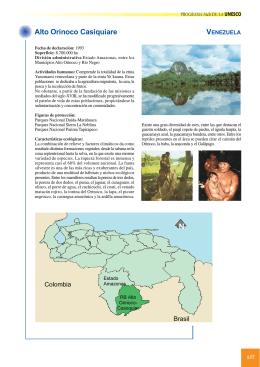 Alto Orinoco Casiquiare