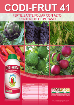 FOLLETO CODI FRUT 41