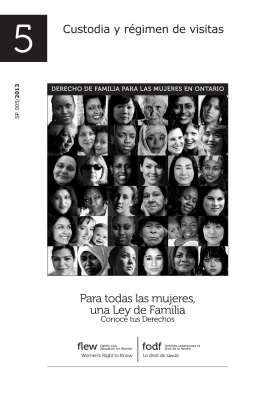 Custodia y régimen de visitas - Family Law Education for Women