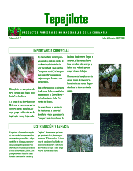 Tepejilote - Grupo Mesófilo AC