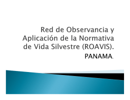 PANAMA. - roavis