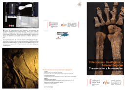 folleto.curso paleontologia.indd