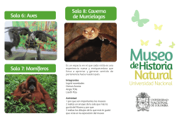 FolleTo Museo Natural