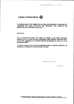 FOLLETO INFORMATIVO REDUCIDO 7ª EMISIÓN DE DEUDA