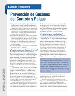 Prevención de Gusanos del Corazón y Pulgas
