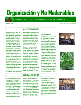 Organización y No Maderables