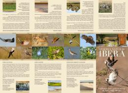 folleto  - Proyecto Iberá