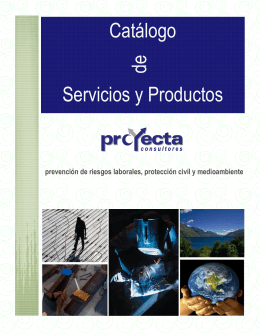 Folleto Proyecta Consultores 2012