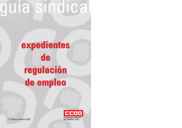 folleto expedientes regulación