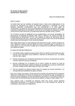 Sr. Director de Recaudación Ayuntamiento / Diputación