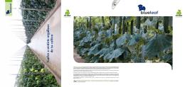 Catálogo Blueleaf (PDF 0,8 MB)