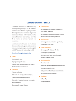 Folleto Camara Gamma..