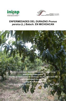ENFERMEDADES DEL DURAZNO Prunus persica (L