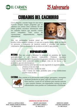 vacunas de cachorro - El Carmen Veterinarios