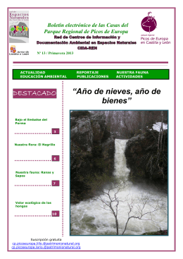 Boletin 13 Primavera 2013 Picos