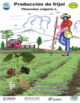 Folleto frijol artesanal - Instituto de Ciencia y Tecnología Agrícola