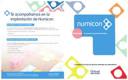 Folleto Numicon 1º Primaria 2014