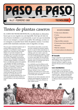 Manual de tintes naturales