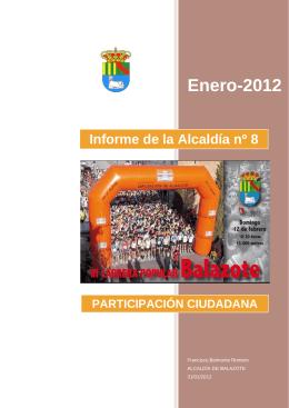 INFORME Nº 8 (31-01-2012)
