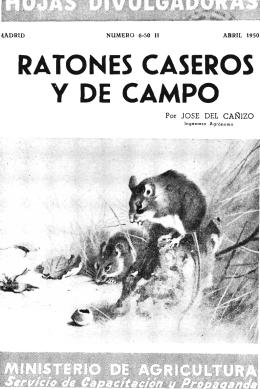 RATONES CASEROS Y DE CAMPO - Ministerio de Agricultura